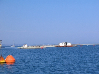 FISH FARMS OF THESPROTIA - PRODUCTIVE & COMMERCIAL S.A. COMPANY OF FISHERY & AQUACULTURE PRODUCTS